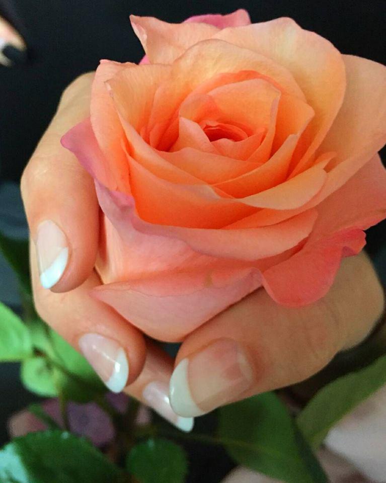 bloem kayly